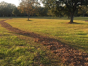RV Park with a Walking Track in Biloxi | Allure RV Park